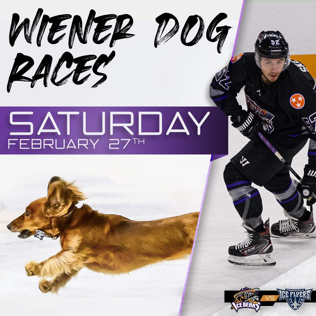 Knoxville Ice Bears Wiener Dog Races Part 1